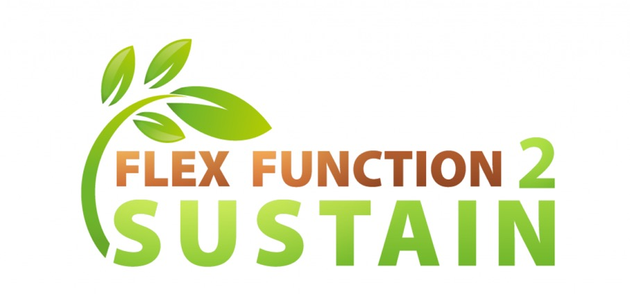 Logo FlexFunction2Sustain